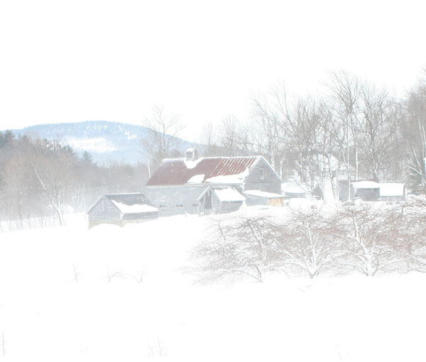 Snow and lots of Wind; Harden Farm, Wilton.....Jim.
