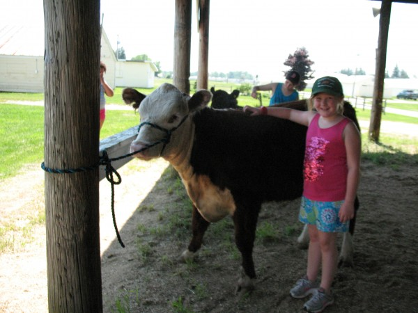 Elizabeth Grondin at the 2013 4-H Fair. She is a member of the Beef Boosters 4-H Club.