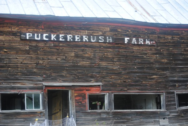 Robby Richards is a third generation farmer in New Sharon at Puckerbrush Farm.